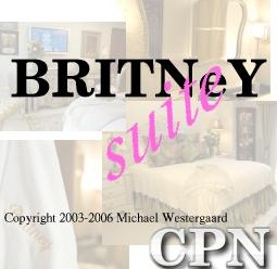 Animations and vizualisation with BRITNeY Suite