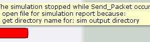 Simulation report